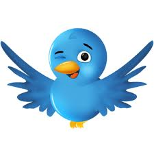 Twitter demanda a sus spammers Twitter reputacion online Outsourcing desarrollo web blogs